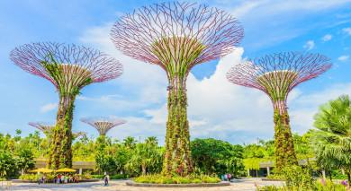 Empfohlene Individualreise, Rundreise: Singapur und Indonesien vom Feinsten – im Reich der Tausend Inseln