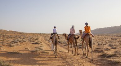 Example private tour: Road Trip: Oman Explorer