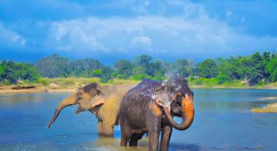 Empfohlene Individualreise, Rundreise: Klassische Nepalreise – dem Himmel so nah