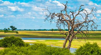Empfohlene Individualreise, Rundreise: Höhepunkte des südlichen Afrika und Urlaub auf den Seychellen