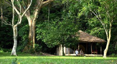 Example private tour: Luxury in Tanzania: Wilderness & Wildlife
