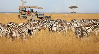 Empfohlene Individualreise, Rundreise: Von Kenia bis Sansibar: Safaris & Strände