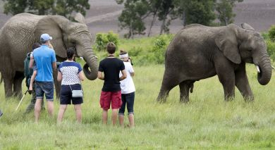 Example private tour: Safari Highlights of Tanzania, Botswana and Zambia