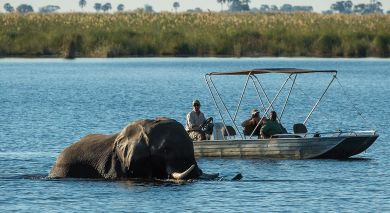 Example private tour: Tanzania, Zimbabwe and Botswana Safari Highlights
