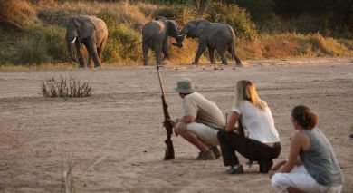 Example private tour: Authentic Tanzania: Wildlife and Pristine Beach