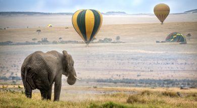 Empfohlene Individualreise, Rundreise: Klassisches Kenia: Samburu, Masai Mara & Strand