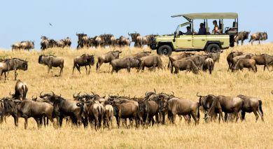 Empfohlene Individualreise, Rundreise: Wilde Schätze im Norden Tansanias