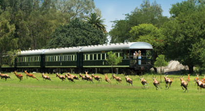 Destination Rovos Rail (Pretoria – Cape Town) in South Africa