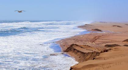 Reiseziel Skeleton Coast in Namibia