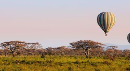 Destination Tarangire in Tanzania