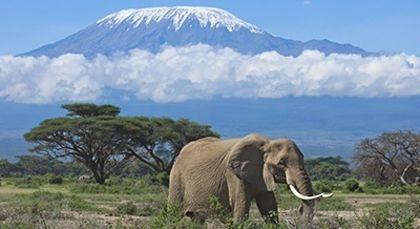 Tansania Reisen in Afrika