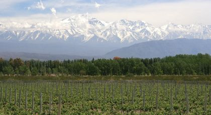 Destination Mendoza in Argentina