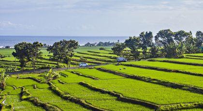 Jembrana in Indonesia