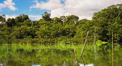 Destination Yasuni in Ecuador/Galapagos