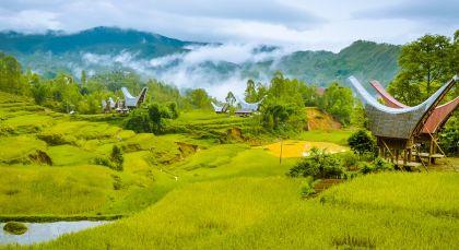 Destination Toraja in Indonesia