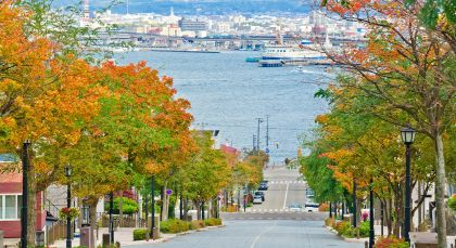 Destination Hakodate in Japan