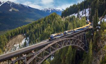 a train crossing a bridge over a river in a forest