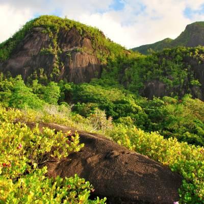 Mountains on Anse Major Trail