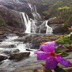 Wasserfälle und farbenfrohe Vegetation in Nuwara Eliya