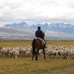 ESA-Chile-Torres del Paine-Outings- best time to travel to Chile
