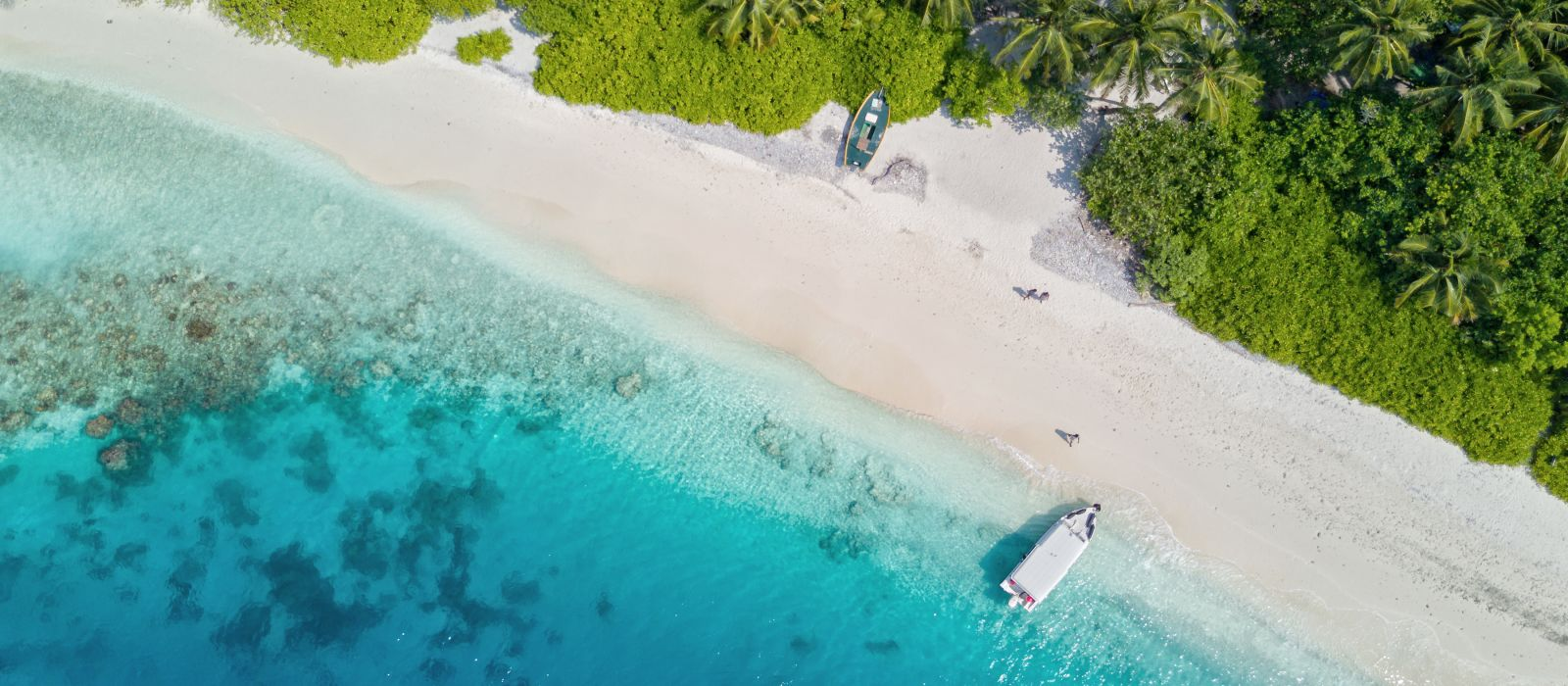 Beautiful aerial view of Maldives jetty and tropical beach with palms and white sand