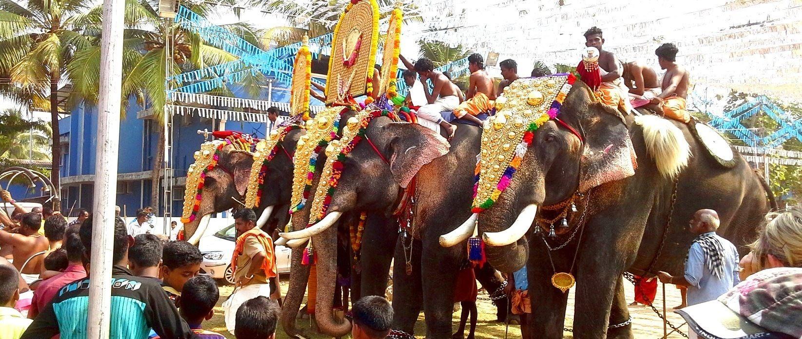 Private India tour Chris and Deb's epic journey-cochin-festival