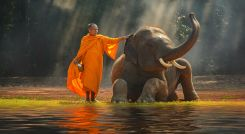 Southeast Asia Tour with Enchanting Travels