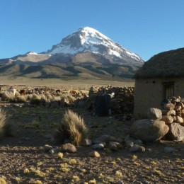 Enchanting Travels Bolivia Tours Sajama