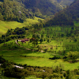Coffee Region Colombia Enchanting Travels South America Vacation Colombia Tours