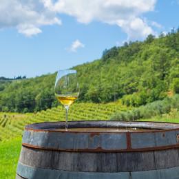 Weißwein und Weinberge, Istrien, Kroatien