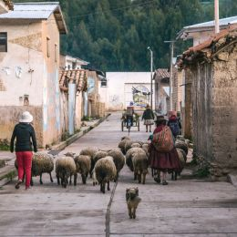 Safety in Peru - Local street life in a village in the Andes of Peru, South America