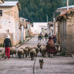 safety in Peru