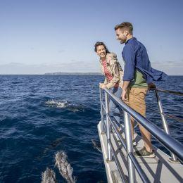 Ein Mann und eine Frau stehen an der Reling eines Schiffs in der Nähe von Auckland Harbour, Australien