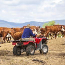 Australian farmer on quad bike, Australia Tours