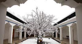 Enchanting Travels India Tours Alchi Hotels Apricot Tree Hotel