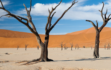 Desert landscape in Sossusvlei, Namibia