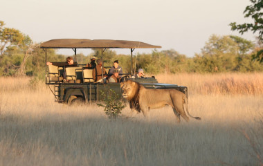 The Best Ever Luxury Safari Tours in Zimbabwe
