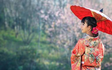 Geisha in Japan