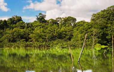 Enchanting Travels Ecuador Tours Amazon Yasuni National Park