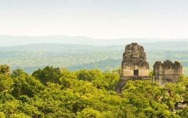 Enchanting Travels Guatemala Tours Tikal ruins in Guatemala with thick tropical jungle