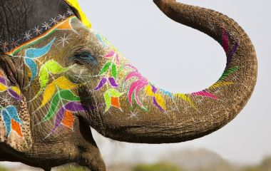 A Celebration Of The Top Festivals Of Asia – 2015, with Enchanting Travels