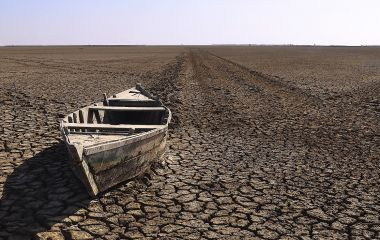 Rann of Kutch - Things to do in Central & West India