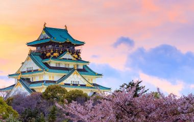 Enchanting Travels Japan Tours Twilight at Osaka castle during Cherry blossoms season in Osaka, Japan - History of Japan