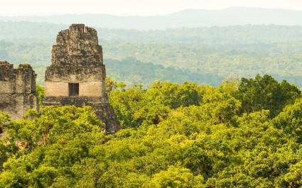 Die Tikal Ruinen in Guatemala