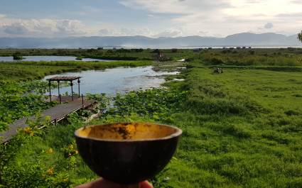 Holzschale mit Getränk und Blick auf saftig-grüne Landschaft und Seen in Myanmar