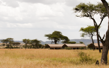 Echanting Travels - Tanzania Tours - Serengeti (Central) Hotel - Kubu Kubu Tented Camp - Serengeti Kati Kati Tented Camp - Set Up Camp (1)