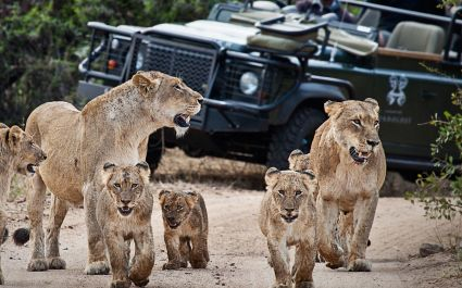 Enchanting-Travels-Africa-South-Africa-Kruger-South-Londolozi-Founders-Camp-5