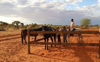 Horse riding at Bagatelle Game Ranch, Kalahari Desert in South Africa
