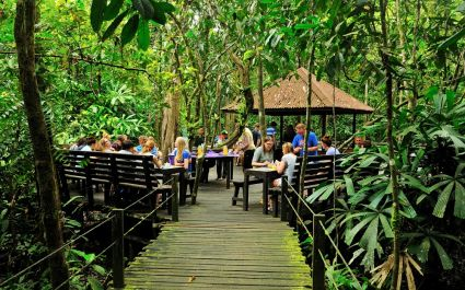 Breakfast outdoors at Abai Jungle Lodge