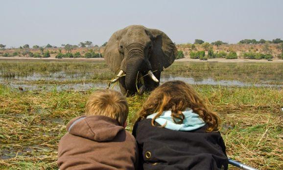 Bootssfari im Okavango Delta
